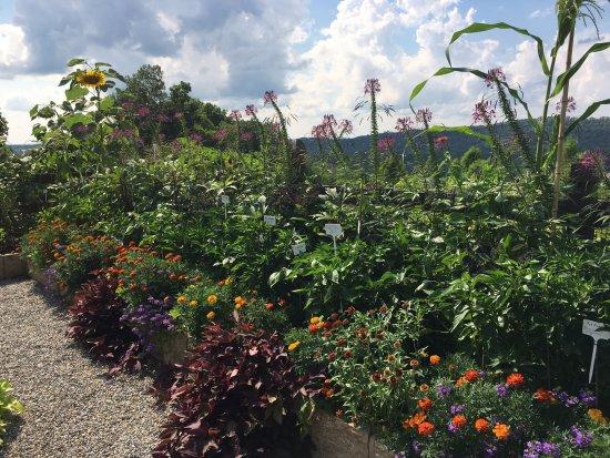 Hamburg, Nueva Jersey: Chef Gardens