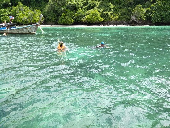 Andaman Camp and Day Cruise : My father enjoyed the snorkeling session with one of the tour operator guide!