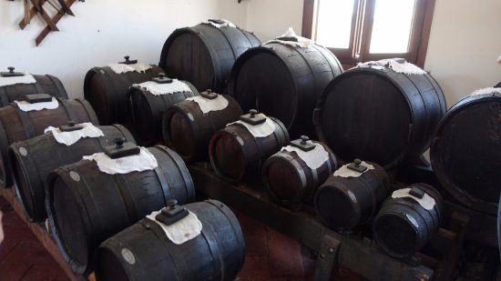 ARTEMILIA Guided Tours: Balsamic vinegar