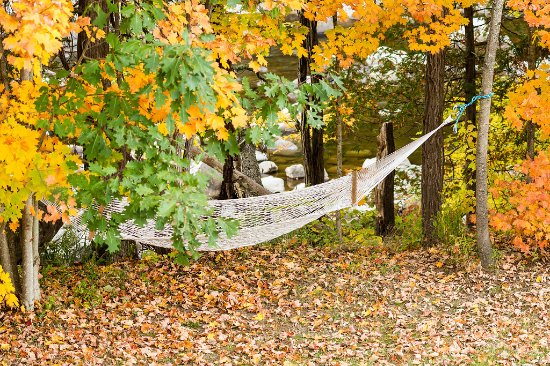 Upper Jay, Nowy Jork: Nothing is more peaceful than a nap in the hammock by the river