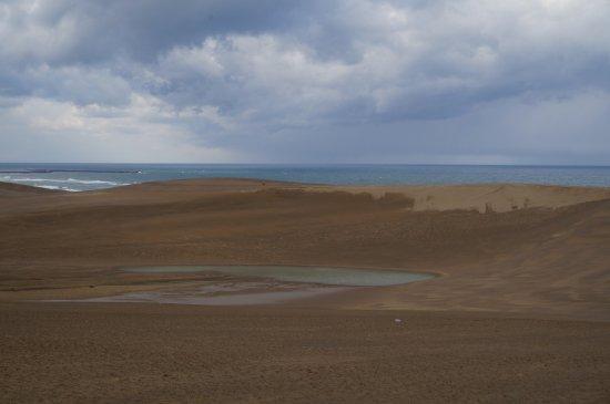 Tottori Sand Dunes : 鳥取沙丘