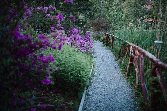 Madeira Park, Canada: Property walkaway