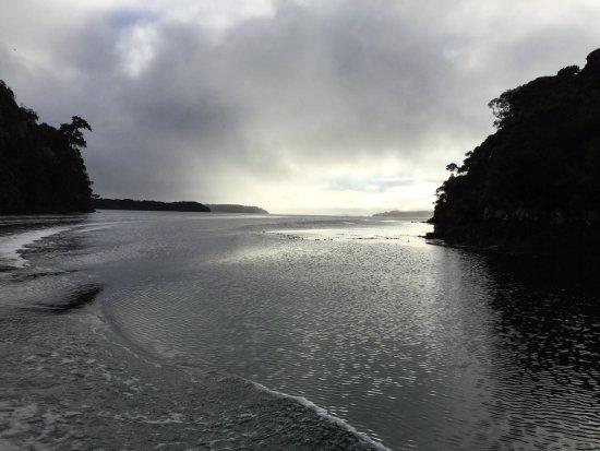 Stewart Island, New Zealand: photo1.jpg