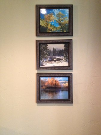 Soda Butte Lodge: Beautiful local photographs