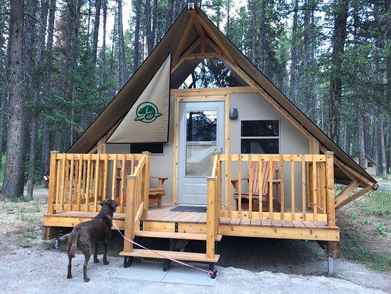 Tunnel Mountain Village II Campground: photo0.jpg