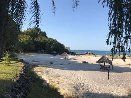 Makuzi Beach Lodge 사진