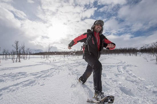 Small-group Snowshoeing Tour from ...