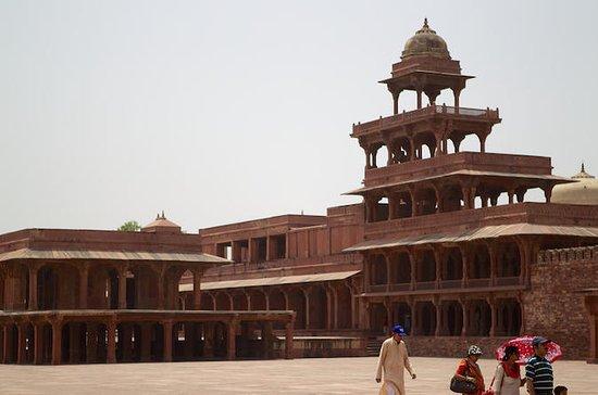 Excursão privada de Jaipur a Agra...