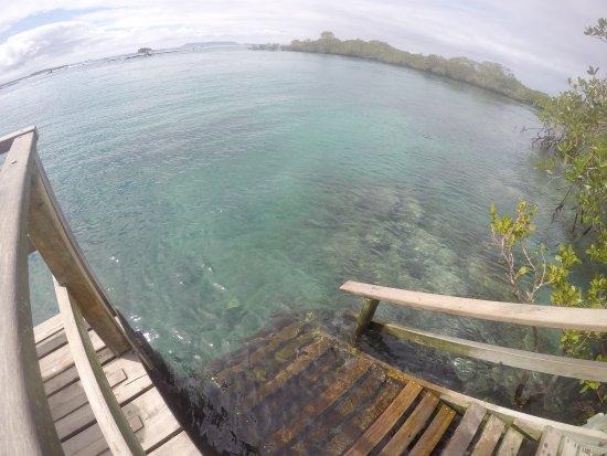 Puerto Villamil, เอกวาดอร์: G0519849_large.jpg