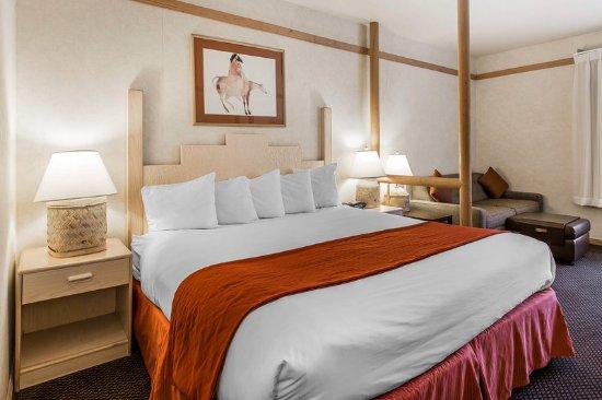 Quality Suites: Guest Room
