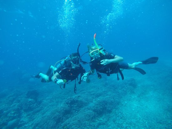 Blue Marlin Dive Gili Trawangan: photo0.jpg