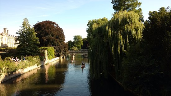Scudamore's Punting Company: Punts on the River Cam