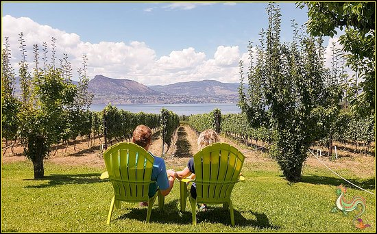 Summerland, Canadá: Couple Enjoying View Joie Farm Winery Giants Head Mountain Okanagan Lake Naramata