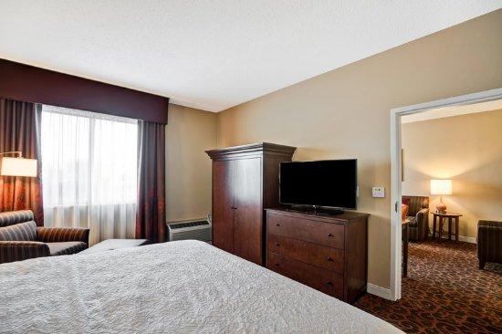 Hampton Inn Baltimore / Glen Burnie: King Room