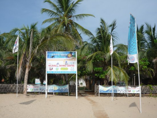 NILAVELI DIVING CENTRE, PADI 5 Star IDC Dive Resort, S-23912