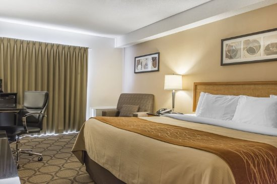 Comfort Inn Magnetic Hill: Guest room