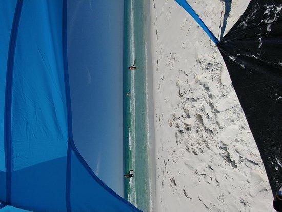 Camp Gulf: 0801171023_large.jpg