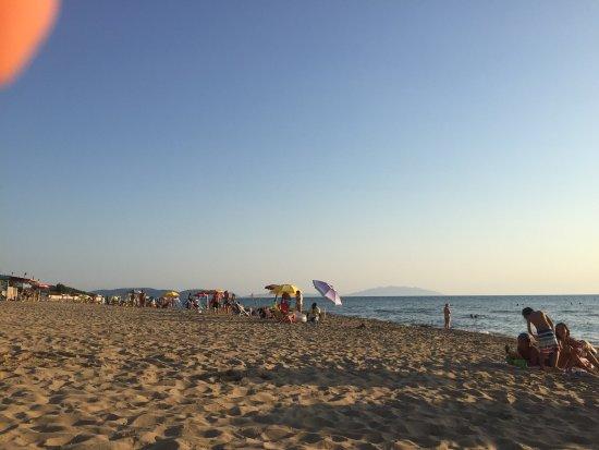 Spiaggia La Principess / Principess Beach: Pineta alle spalle della spiaggia con punto ristoro