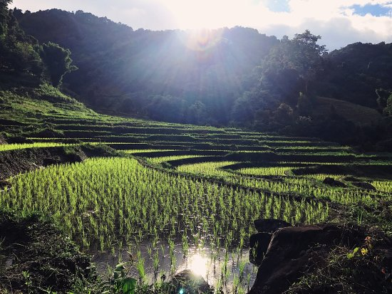 Next Step Thailand (Travel with Joe) Cycling and Hiking Private Day Tours: photo0.jpg