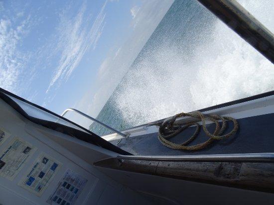 St Ives Boats: DSC07446_large.jpg