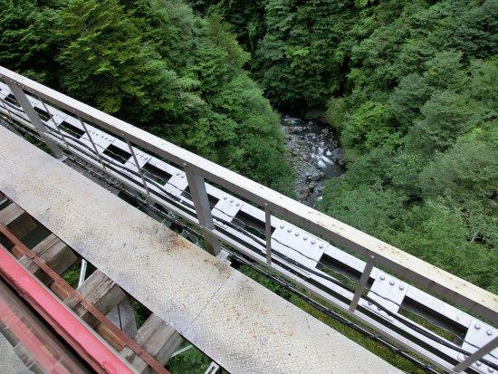 Shizuoka Prefecture, Japan: 日本一高い鉄橋らしい
