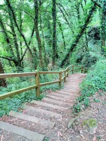 Dombodan, Spagna: Pasarelas con escaleras de descenso a la catarata