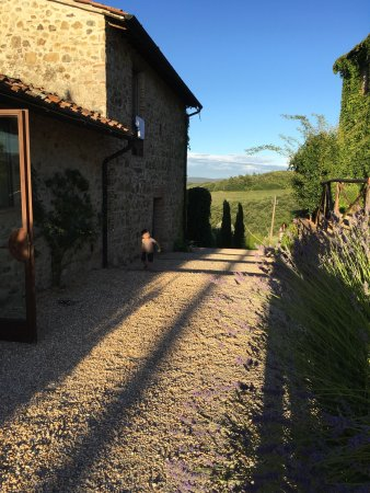 Montalcinello, Италия: Fantastic stay at this place....
