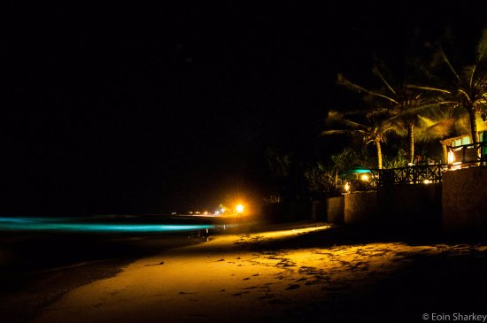 Diani Blue: Beachfront at night