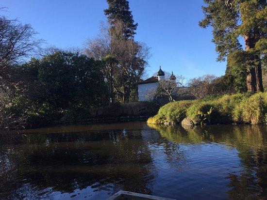 Dunedin Botanic Garden: photo7.jpg