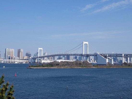 Odaiba Kaihin Koen (Odaiba Seaside Park) : 遠くからレインボーブリッジ