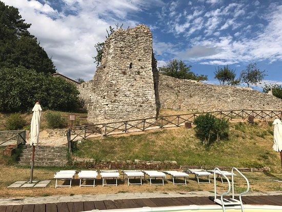 Agriturismo Borgo San Benedetto : IMG-20170725-WA0110_large.jpg
