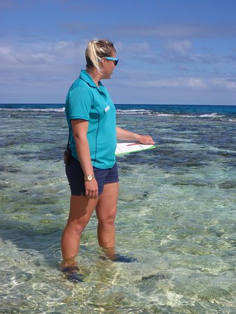 Lady Elliot Island, Australia: photo8.jpg