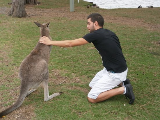 Lake Conjola, Australië: Me with a Kangaroo during my stay close the Conjola Lake