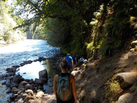 McKenzie Bridge, OR: Short trail to the springs