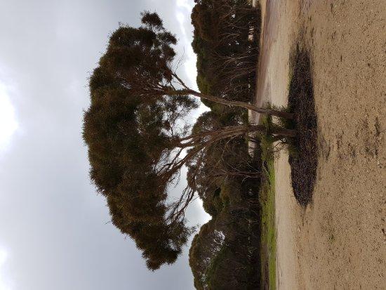 Kingscote, Australien: Emu Ridge