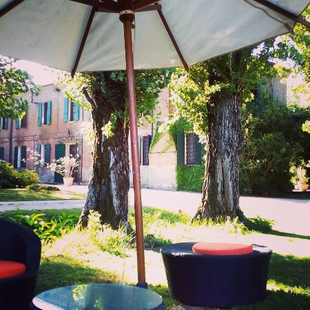 Taglio di Po, Italy: IMG_20170727_100404_472_large.jpg
