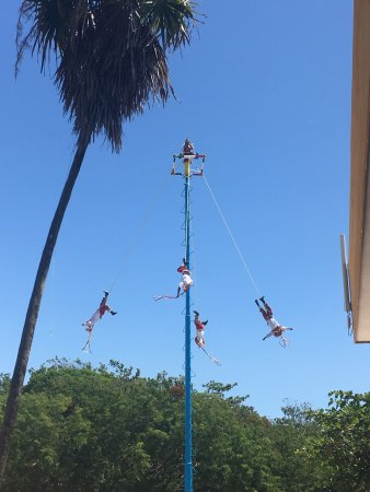 Amigo Tours Playa Del Carmen