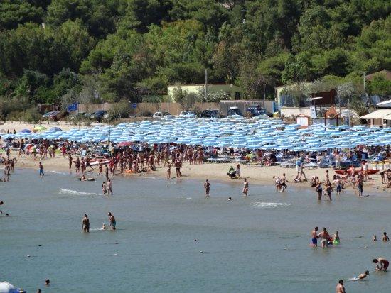 Defensola, Италия: Il lido Molinella