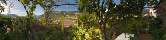 photo2.jpg - Picture of La Terrazza Dei Pelargoni B&B, Ventimiglia ...