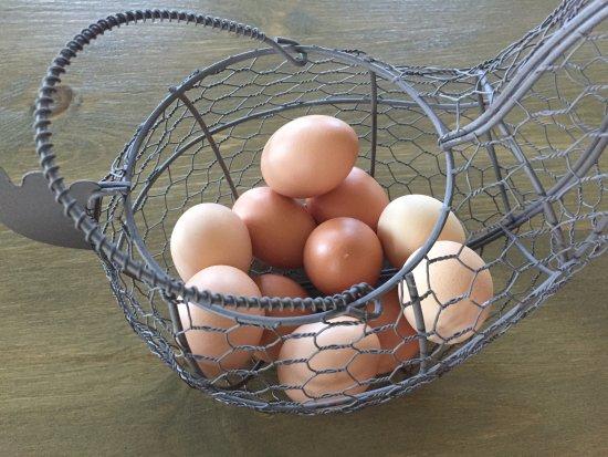 Hartland, VT: Fresh eggs