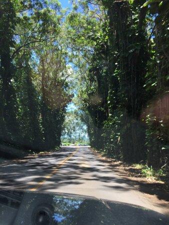 Kalaheo, Χαβάη: photo0.jpg
