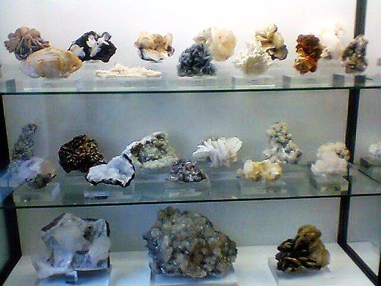 Museo de Ciencias Naturales de Alava