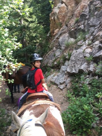 Snowmass Creek Outfitters: My 10 year old son rode 'Peanut'. They both did very well.