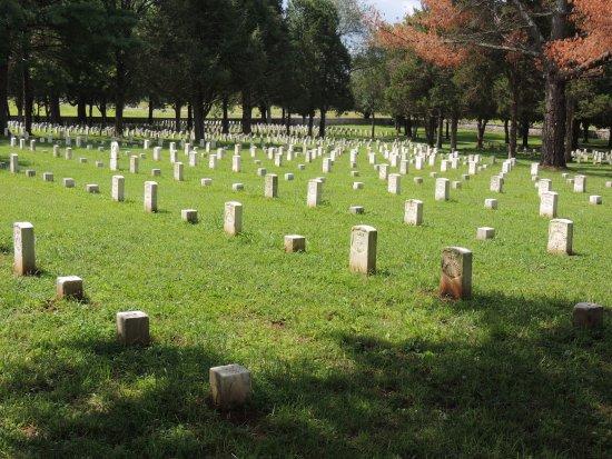 Murfreesboro, TN: Graves with varying gravestones