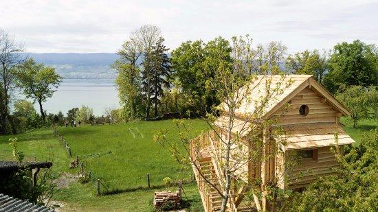 Estavayer-le-Lac, Szwajcaria: Cabane Perchée