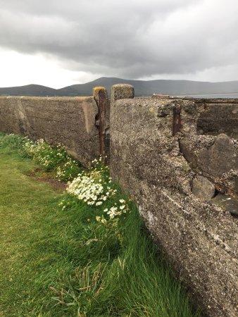 Ballydavid, Irland: photo9.jpg