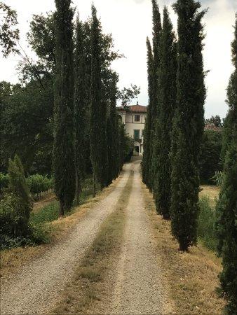Agriturismo Barone Albergotti照片