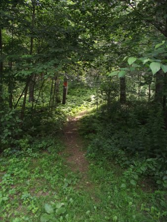 MASSACHUSETTS – ROWLEY - HUNSLEY HILLS CONSERVATION AREA - TRAIL #1