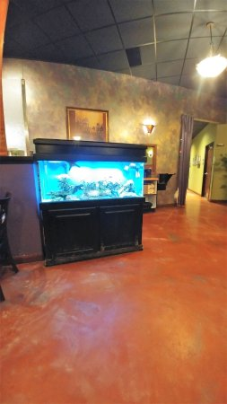 Gingerootz Asian Grille: Fish tank