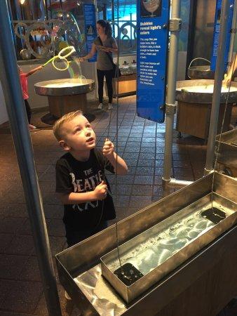 Long Island Children's Museum : photo2.jpg